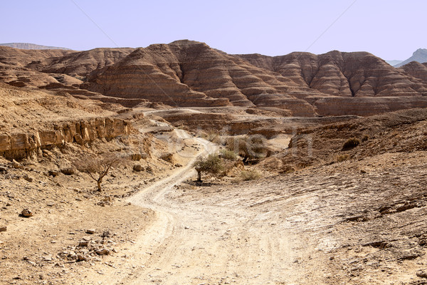 Dusty Road In The Negev Desert Stock photo © searagen