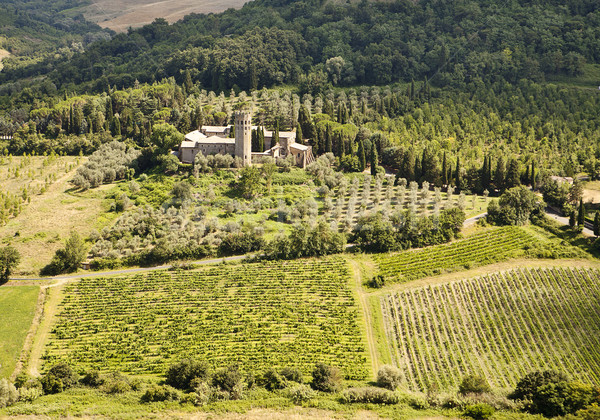 Vineyards and Estate In Umbria Stock photo © searagen
