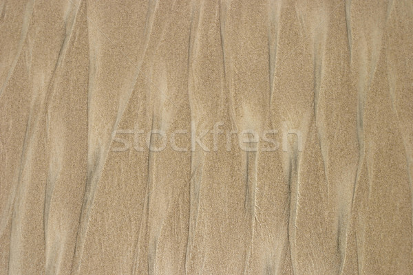 Beach Sand Background Stock photo © searagen