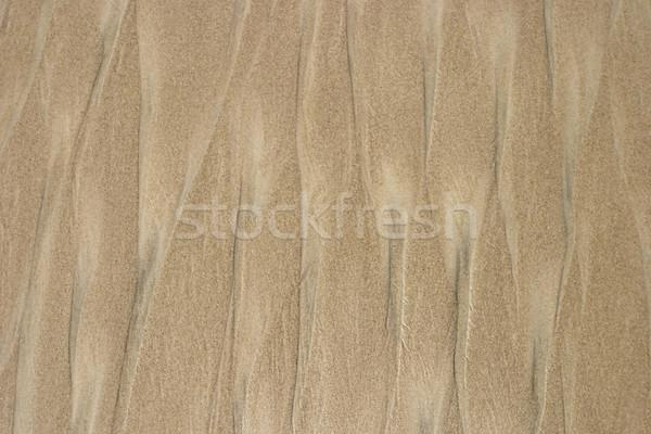 Tengerparti homok hullám kicsi magvak minta hasonló Stock fotó © searagen