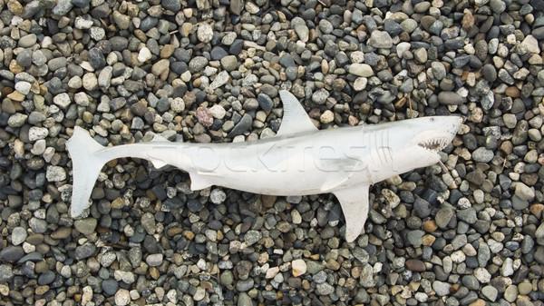 Stock photo: Toy Shark On Beach