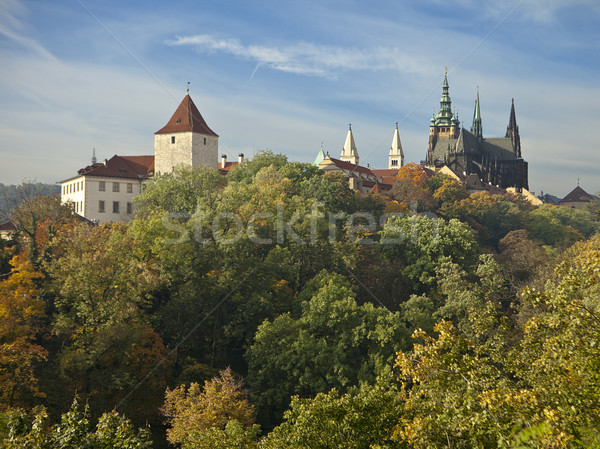 Prague Castle In Autumn Stock photo © searagen