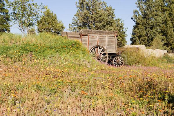 Velho pioneiro abandonado prado Foto stock © searagen