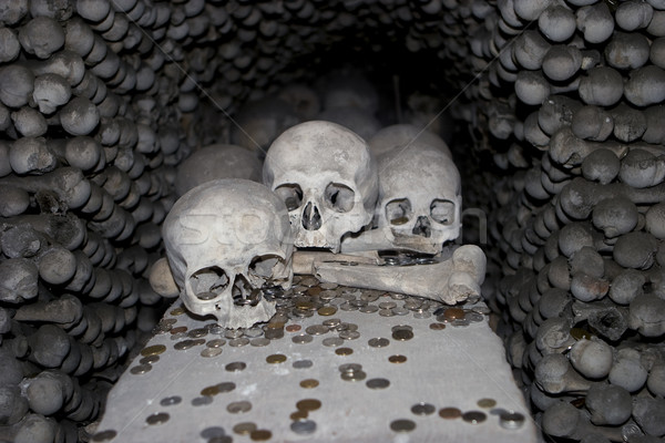 Three Skulls and Coins Stock photo © searagen