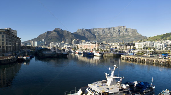 Cape Town tabel berg panorama skyline Stockfoto © searagen