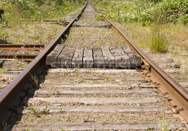 Railroad Tracks To Infinity Stock photo © searagen