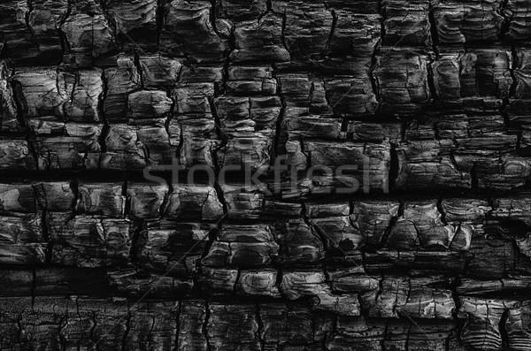 Charred Wood Stock photo © searagen