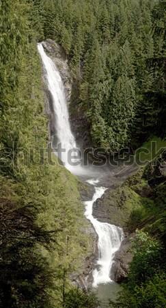 Centro cascada Washington dos diferente agua Foto stock © searagen