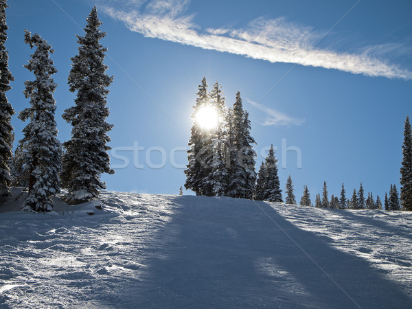 Colorado Ski Slope Stock photo © searagen