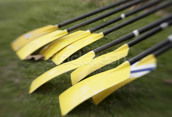 Yellow Oars Before Race Stock photo © searagen