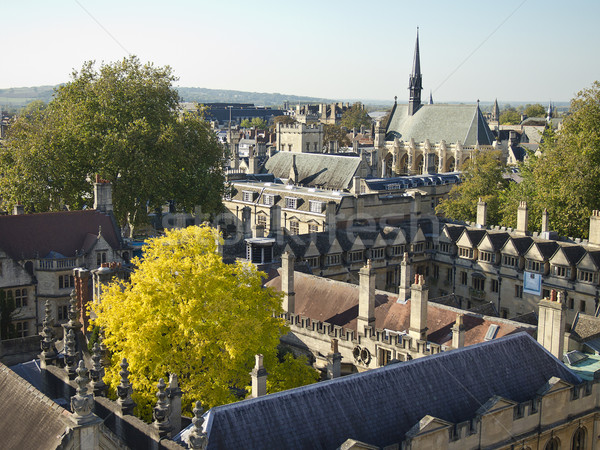 Roofs of Oxford University Stock photo © searagen