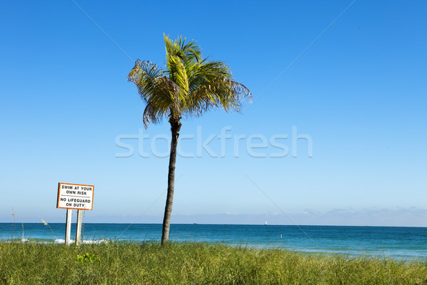 Swim At Your Own Risk, Horizontal Stock photo © searagen
