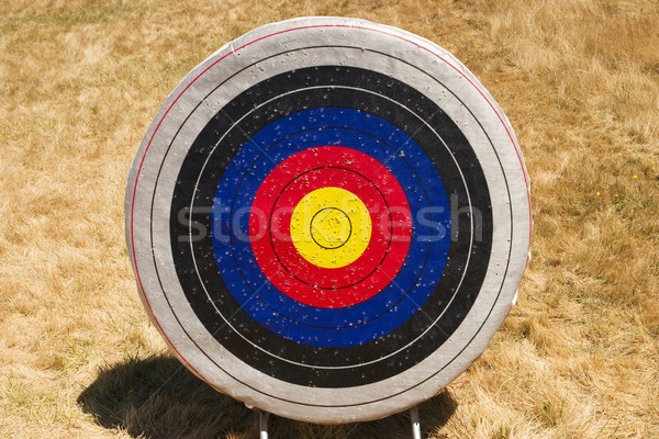 Archery Target Stock photo © searagen