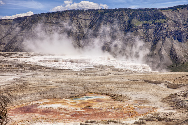 Canary Springs At Mammoth Hot Springs Stock photo © searagen