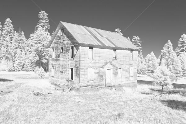 Ghost Bunkhouse In The Ochocos Stock photo © searagen