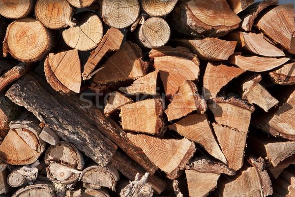 Yakacak odun ahşap çok göstermek büyüme Stok fotoğraf © searagen