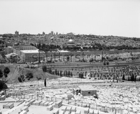Jerusalem from Mount of Olives Stock photo © searagen