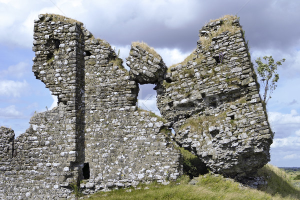 Ruins of Clonmacnoise Castle Stock photo © searagen