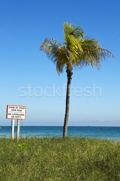 Swim At Your Own Risk, Vertical Stock photo © searagen