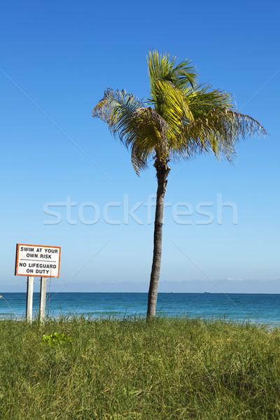 Nadar próprio risco vertical assinar Miami Foto stock © searagen