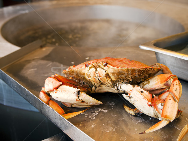 Cooked Crab Stock photo © searagen