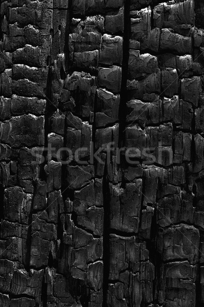 Charcoal Patterns Stock photo © searagen