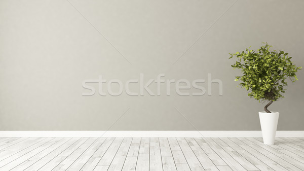 empty room with plant and brown wall Stock photo © sedatseven
