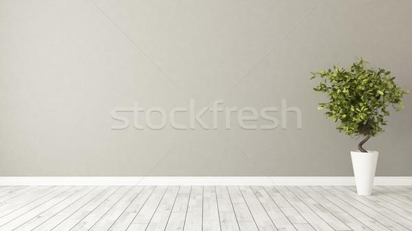 Lege kamer plant bruin muur licht groene Stockfoto © sedatseven