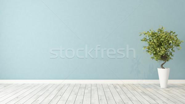 Lege kamer plant Blauw muur groene vaas Stockfoto © sedatseven