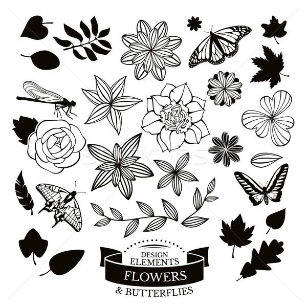 Conjunto flores folhas insetos flor verão Foto stock © SelenaMay