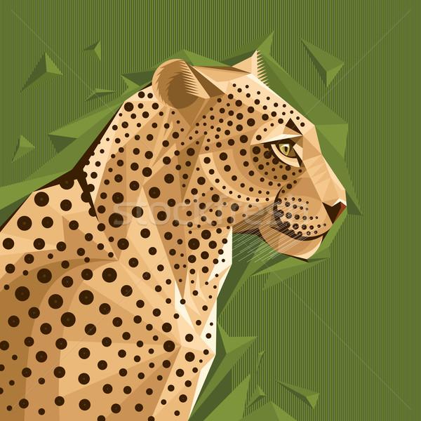 Portre leopar soyut yüz dizayn Afrika Stok fotoğraf © SelenaMay
