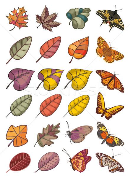 ストックフォト: コレクション · 葉 · 蝶 · 抽象的な · カラフル · ベクトル