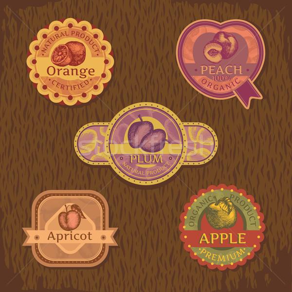 vintage fruit label  Stock photo © SelenaMay