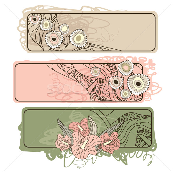 horizontal floral banners Stock photo © SelenaMay