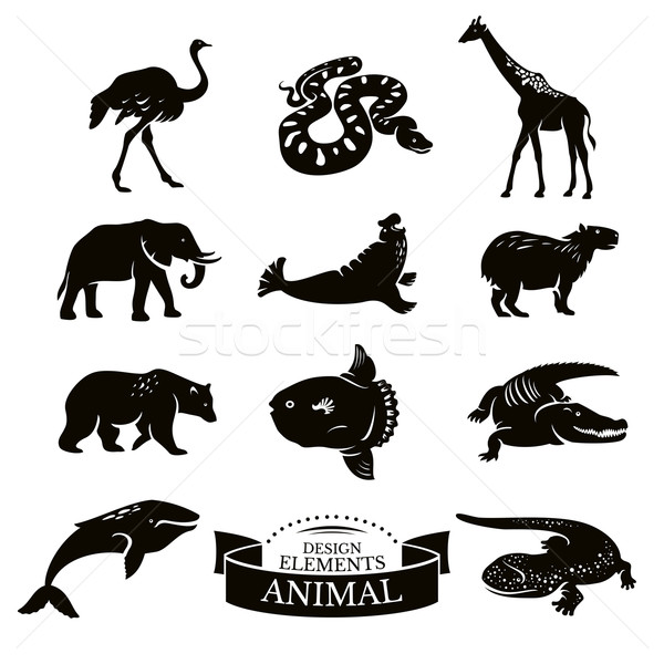 Stock photo: Set of animal icons