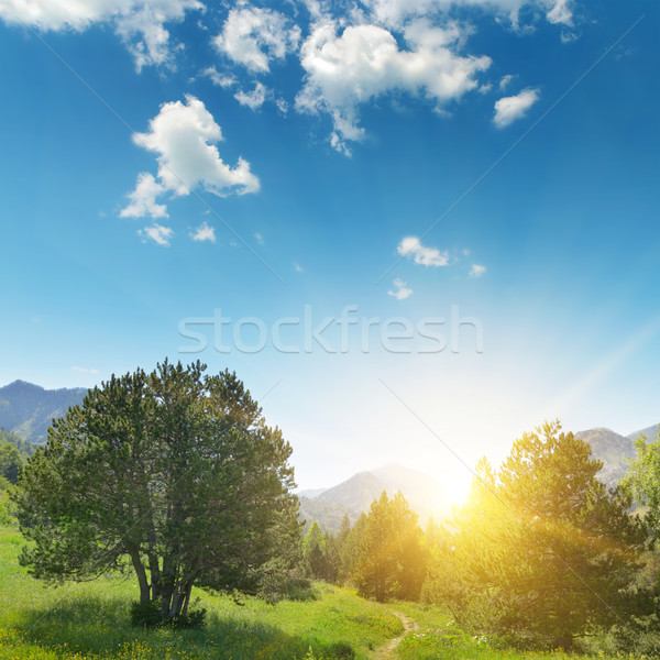Beautiful sunrise in the mountains Stock photo © Serg64