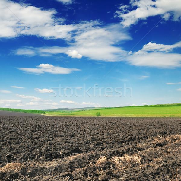 arable land Stock photo © Serg64