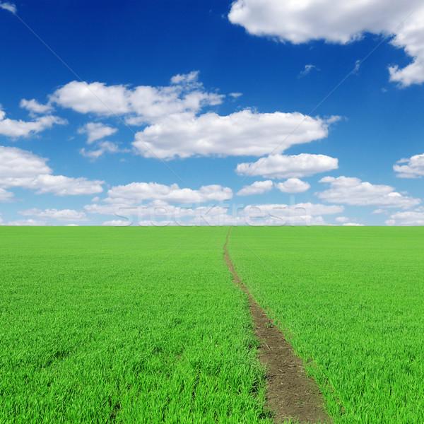 путь области облака весны фон зеленый Сток-фото © Serg64
