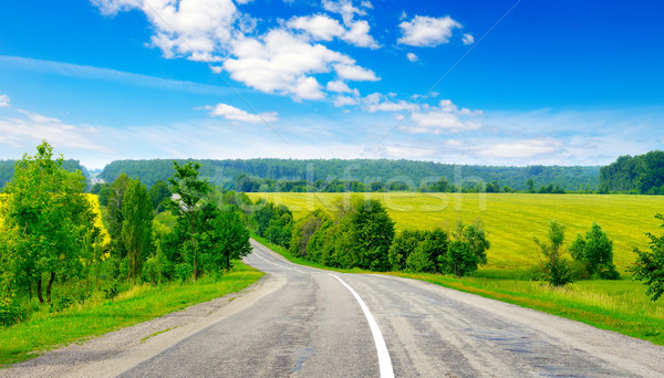 Rural paved road among fields Stock photo © serg64