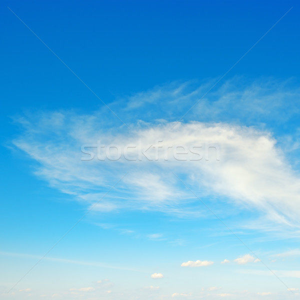 Light clouds in the sky Stock photo © serg64