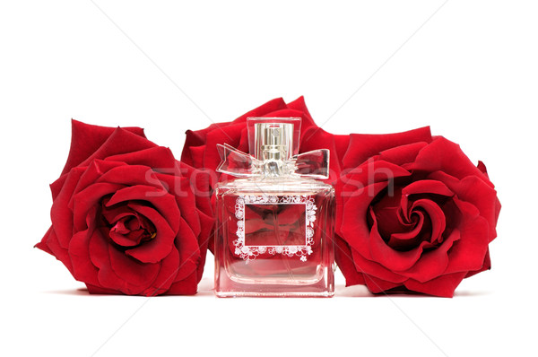 духи роз изолированный белый женщину закрывается Сток-фото © Serg64