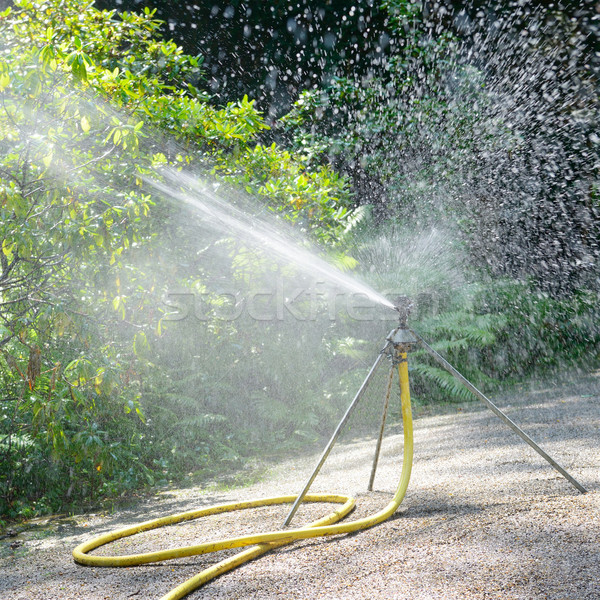 Stock photo: sprinkler watering the plants in park
