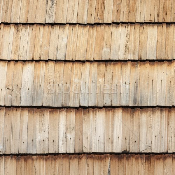 Fából készült textúra fa erdő kereszt fák Stock fotó © Serg64