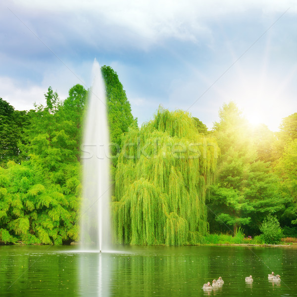 large fountain in the lake sunlit Stock photo © Serg64