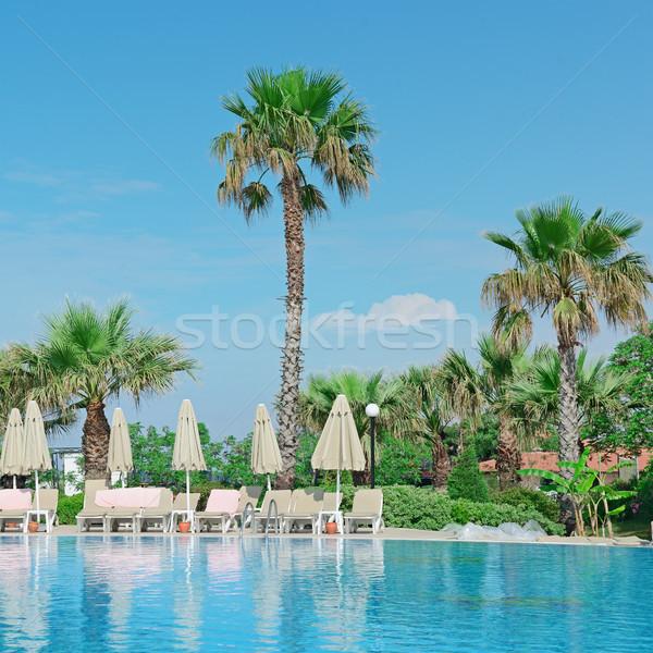 Outdoor zwembad strand zee water boom Stockfoto © serg64
