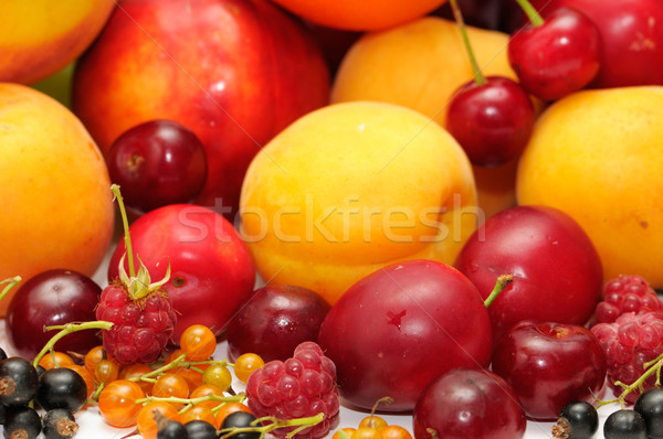 fruits Stock photo © Serg64