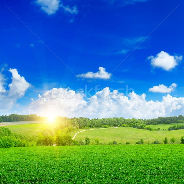 красивой закат зеленый области небе облака Сток-фото © serg64