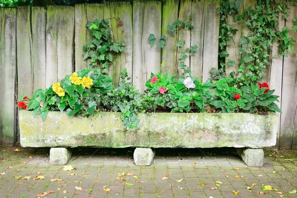 Virágágy tábla kerítés fa tavasz fal Stock fotó © Serg64