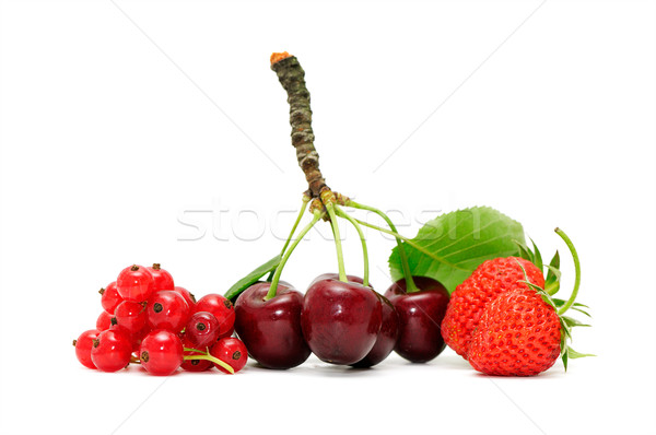 Stock fotó: Gyümölcsök · háttér · nyár · csoport · farm · piros