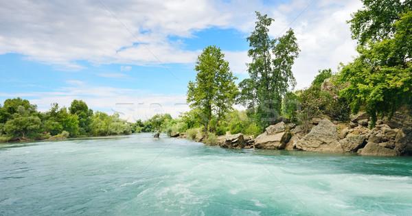 красивой реке воды весны древесины Сток-фото © serg64